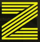 ZUNA Executive