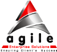 Agile Enterprise Solutions, Inc